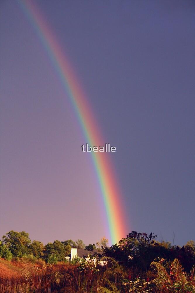 Catch Your Rainbow! by Terri~Lynn Bealle
