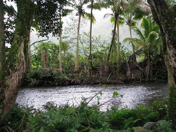 Waipio Valley by lilestduncan