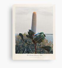 Ever Present Banksia, Sydney #createarthistory Canvas Print