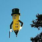 Peanut in The Sky by Daniela Weil