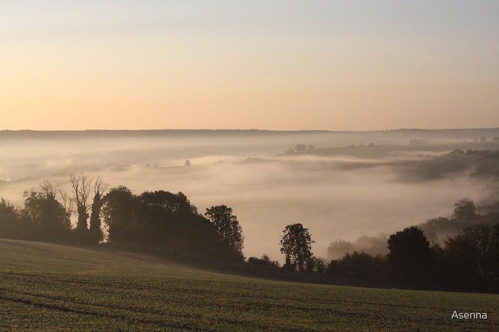 Morning Glory II by Asenna
