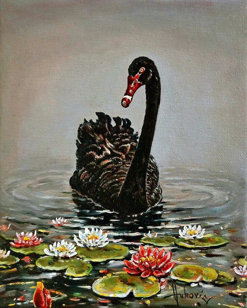 black swan by dusanvukovic