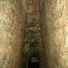 Late Minoan Cemetery by Anne-Marie Bokslag