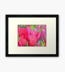Tulip Impression Framed Print
