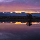 Sierra's Sunset by photosbyflood