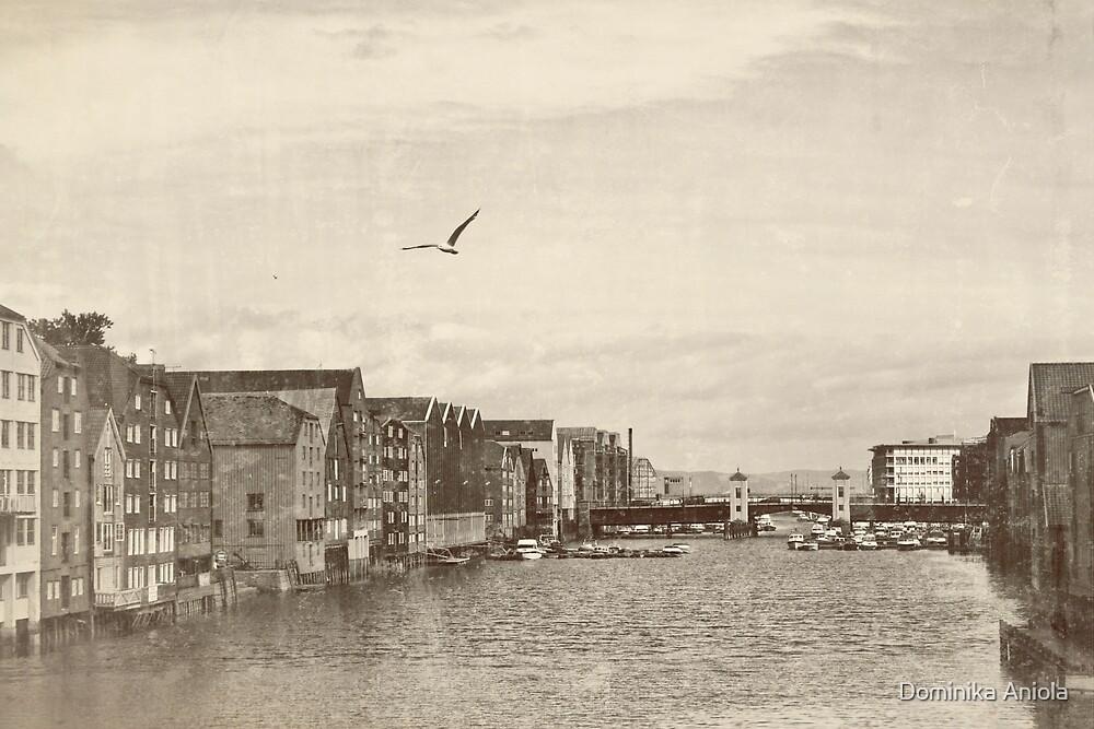 A postcard from Trondheim by Dominika Aniola