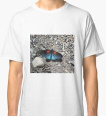Shiny blue butterfly with red markings Classic T-Shirt
