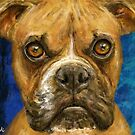 A painting of a brown Boxer looking straight at you by ibadishi