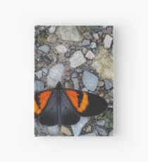 Two black and orange butterflies Hardcover Journal