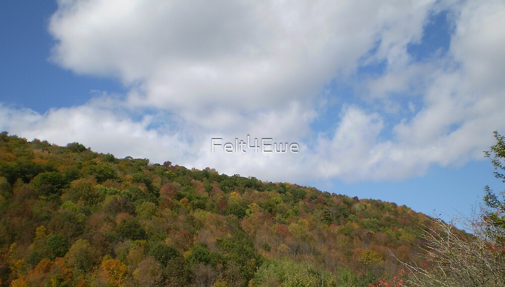 Early fall color by Felt4Ewe