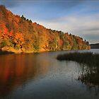 The autumn lake (Lithuania) by Antanas
