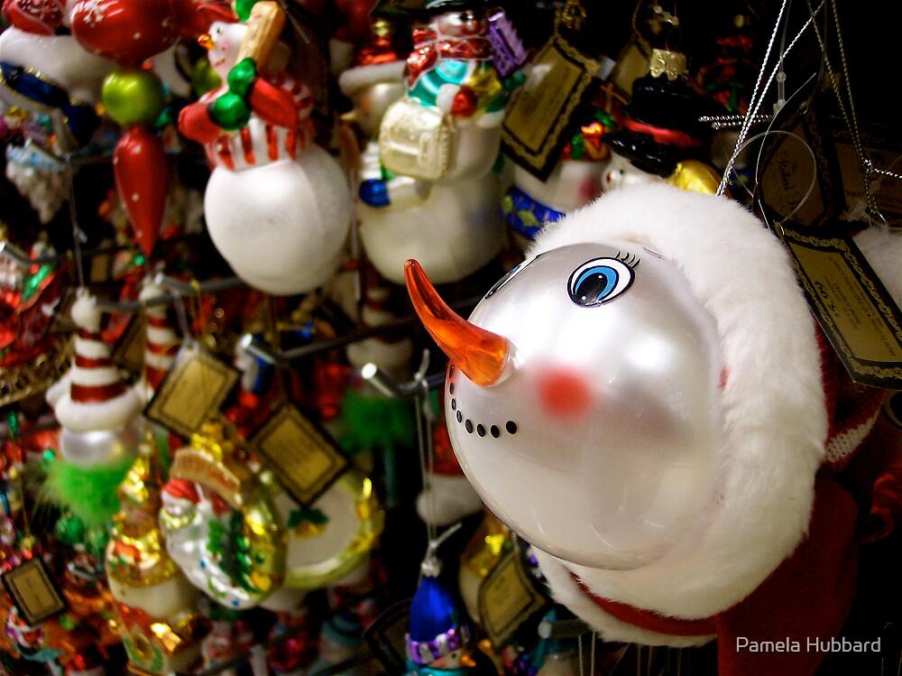 I Want The Snowman! by Pamela Hubbard