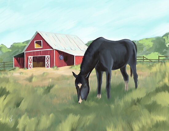 Horse grazing pasture by barn by DOODL