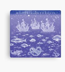 Natural History II in Blue | CreateArtHistory Canvas Print