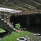 Basement Cave/Garden by Steven Godfrey