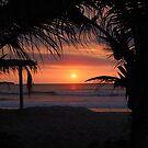 Tropical Sunset in Peru by dare2go