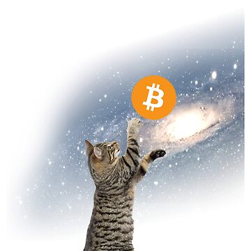 bitcoin space kitty cat by tiaknight