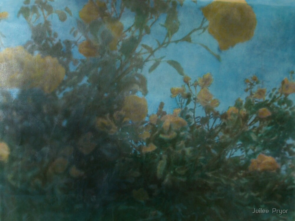 Summer Roses..... handcoloured instamatic print by Juilee  Pryor