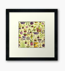 Indoor Plants and Pots Framed Print