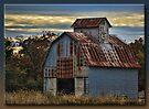 Rusting on the Prairie by Sheryl Gerhard