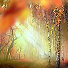 Autumn Forest by Igor Zenin