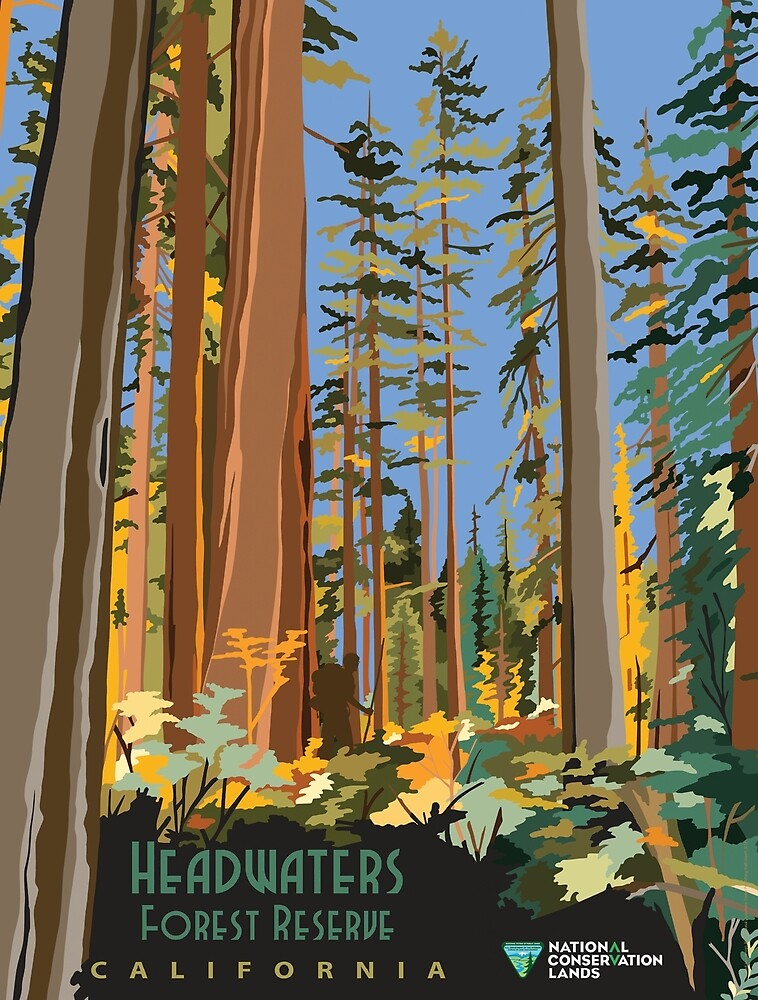 Vintage poster - Headwaters Forest Reserve by mosfunky
