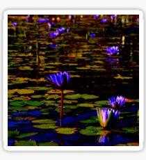Lillies 01 Sticker