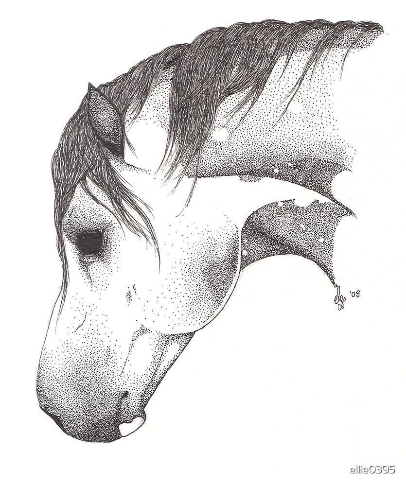 """""""Rhodan"""" - Welsh Stallion by ellie0395"""