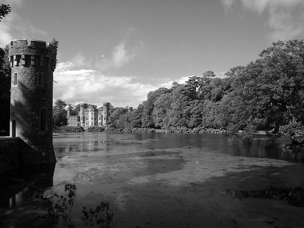Johnstown castle in black and white by John Quinn