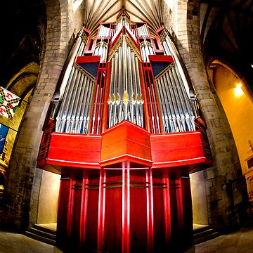 The Organ by maguirephoto