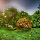 After rain by Sagar Lahiri
