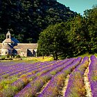 Early Lavender by Marylou Badeaux