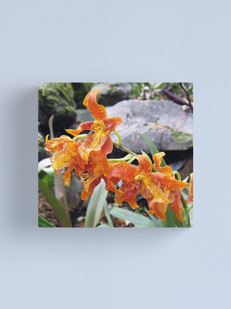 Alternate view of Curly Orange Canvas Print