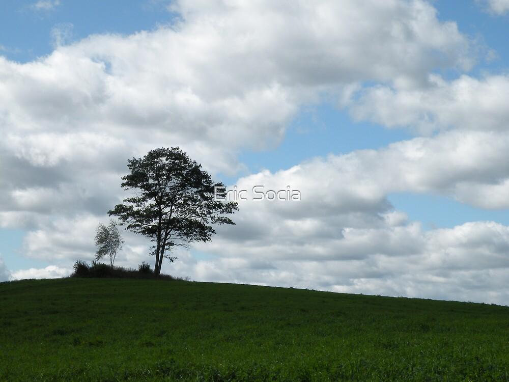Glory Field by Eric Socia