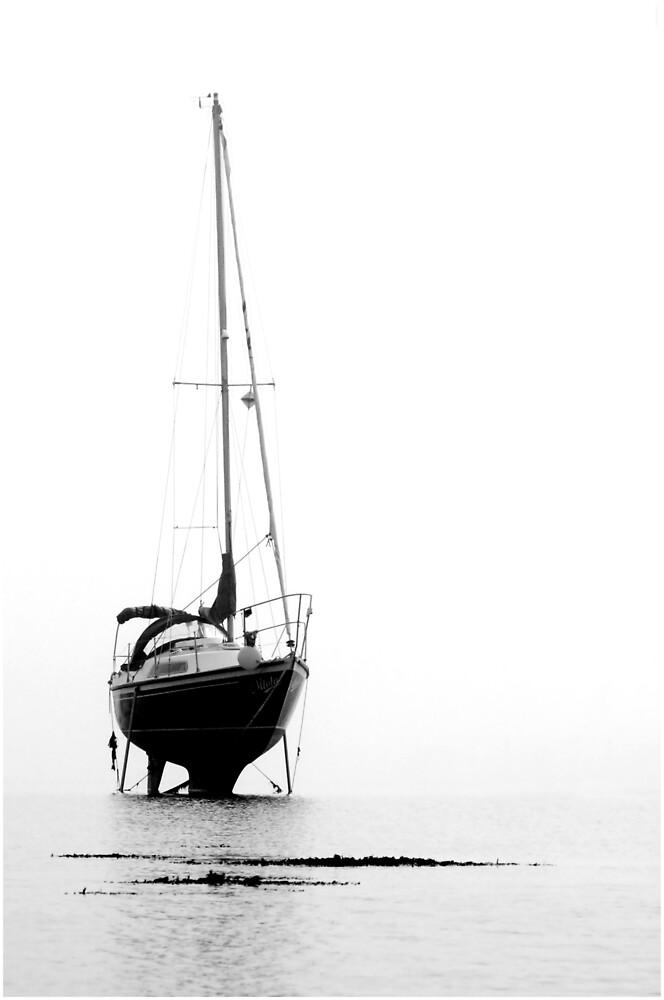 Dead Calm by Glen Birkbeck