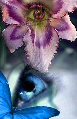 The Eye by flrlessv