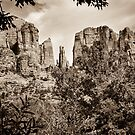 The Cathedral - Sedona Arizona - Red Rock Crossing - Sepia by Gregory Ballos