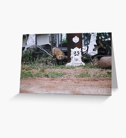 Watching Over our House Greeting Card