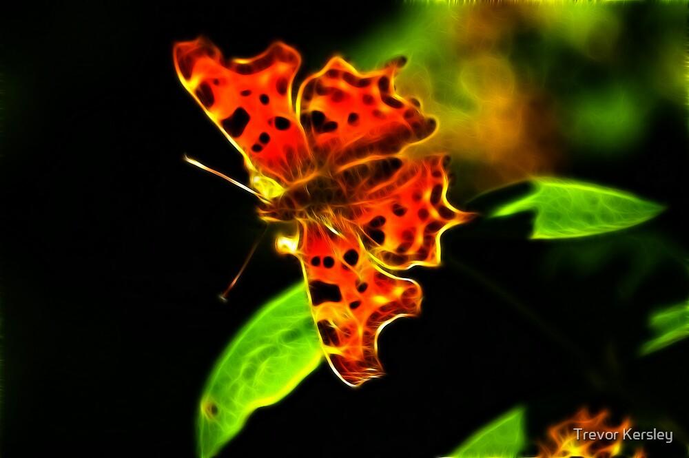 Fractual Butterfly by Trevor Kersley