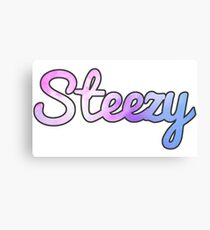 Keepin' the Steeze Canvas Print