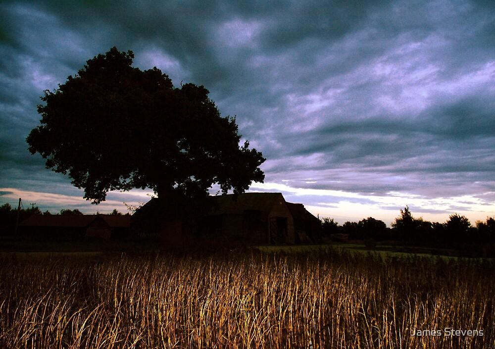 Oak Sky Beanfield Barn by James Stevens
