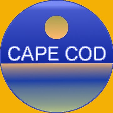 CAPE COD SUNSET T-Shirt by alittlebluesky