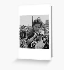 An American Boy  by Dorothea Lange Greeting Card