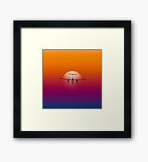 Fly Into The Sun Framed Print