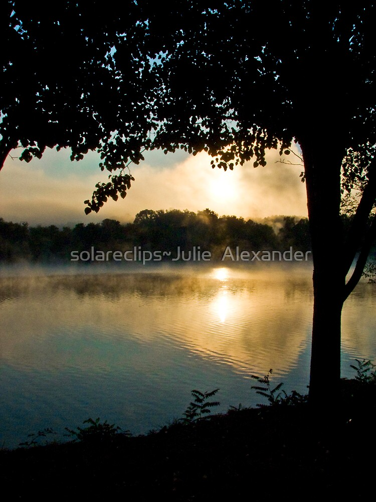The wonder of it all by solareclips~Julie  Alexander