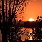 Silhouettes at sunset, San Feliciano, Lago Trasimeno, Umbria, Italy by Andrew Jones