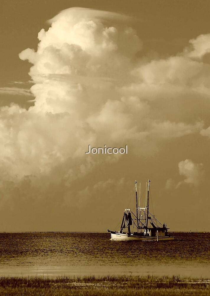 Way of Life by Jonicool