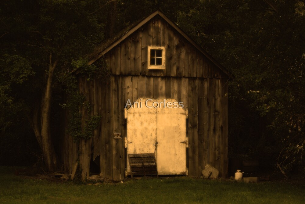 Still Standing by Ani Corless