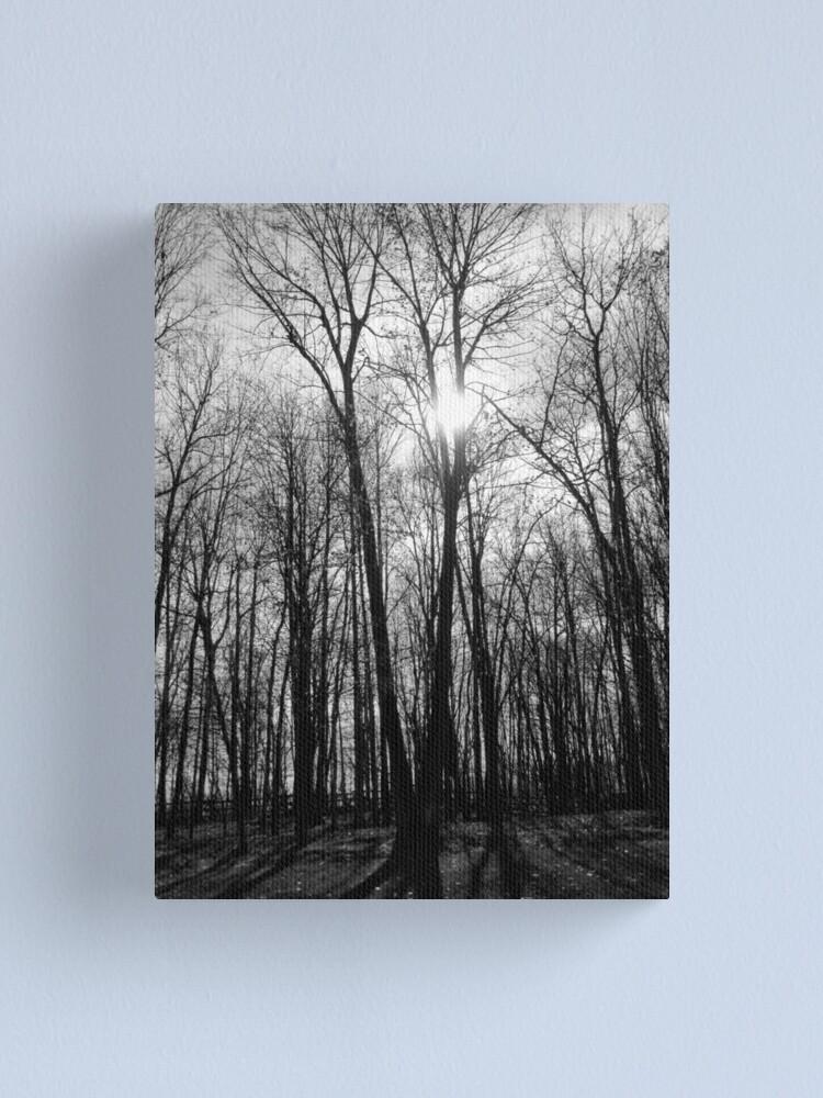 Alternate view of Spooktacular woods Canvas Print
