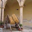 Sicilian Carriage by Rosy Kueng Photography